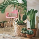 16 Creative And Beautiful Cactus Room Decor 15