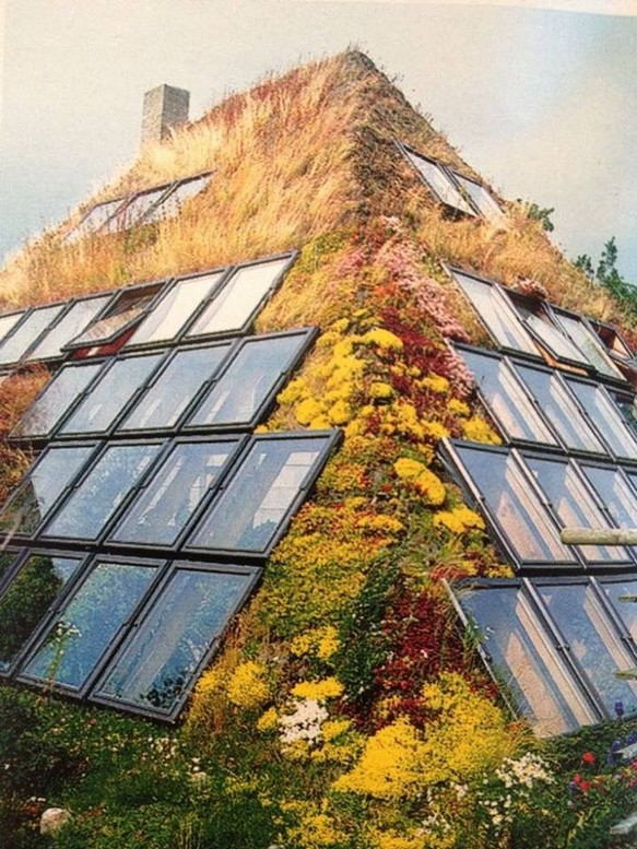 17 Amazing Greenhouse Earthship Home Design Made Of Recycled 23