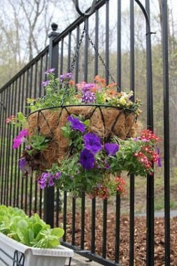 18 Charming Examples How To Arrange Hanging Flowers For Your Yard 11