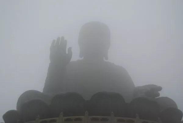 Budas en la niebla