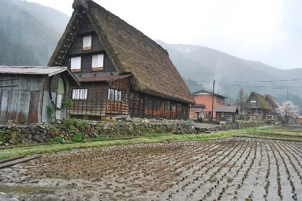 Casas tradicionales de Shirakawa-go