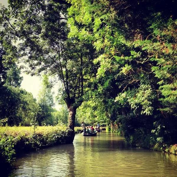 En barca por las Marismas del Poitou