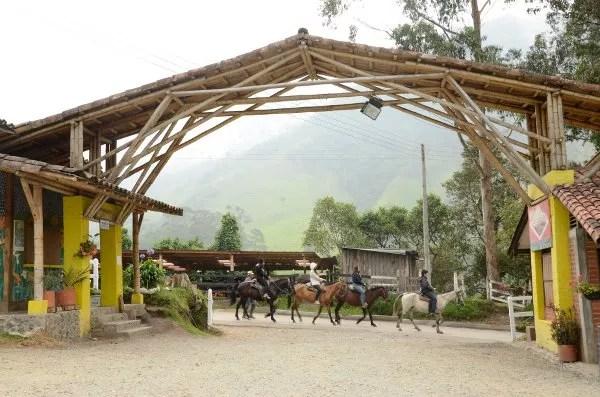 Excursiones a caballo en el Valle de Cocora