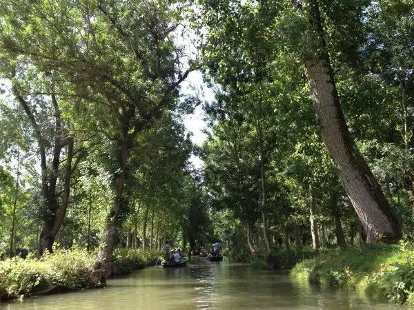 Explorando las Marismas del Poitou