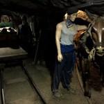Fotos Museo Minero de Escucha, burro