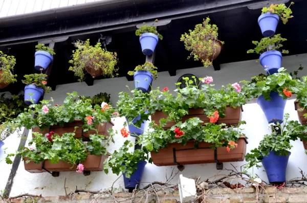Fotos de Córdoba, patio cordobes