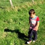 Fotos de Goierri, Oriol y las vacas