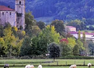 Fotos de Goierri, Segura y las ovejas