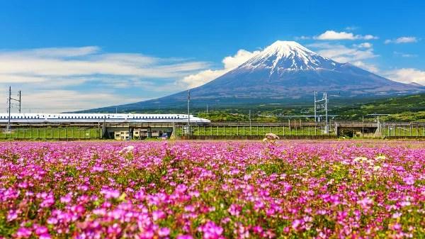 Viaje a Japón: cinco excursiones recomendadas para hacer desde Tokio