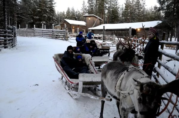 Fotos de Laponia Finlandesa, Pau, Vero, Teo y Oriol con los renos