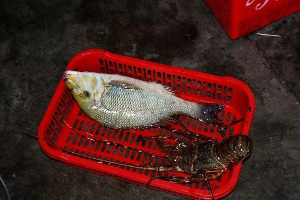 Fotos de Nha Trang en Vietnam, pescado
