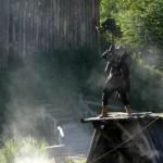 Fotos de Puy du Fou, vikingos llegando