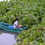 Fotos de Tailandia - crucero desde Ayutthaya, pescador