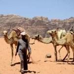 Fotos de Wadi Rum, beduino y manada de camellos