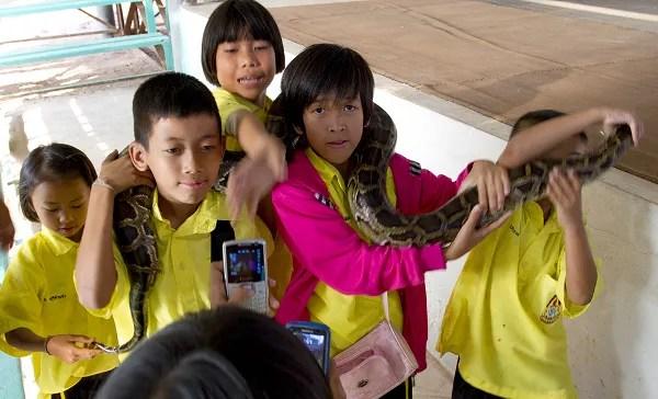 Fotos de viajes a Tailandia con niños y NaaiTravels, niños y serpientes