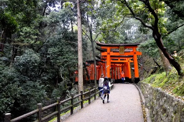 Fotos del Fushimi Inari de Kioto, bosque