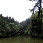Fotos del Fushimi Inari de Kioto, lago