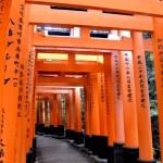 Fotos del Fushimi Inari de Kioto, los torii o puertas rojas