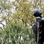 Fotos del Museo Ghibli de Mitaka, robot de espaldas