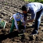 Fotos del Valle del Jerte, Agroturismo El Vallejo Teo, Oriol y Enrique