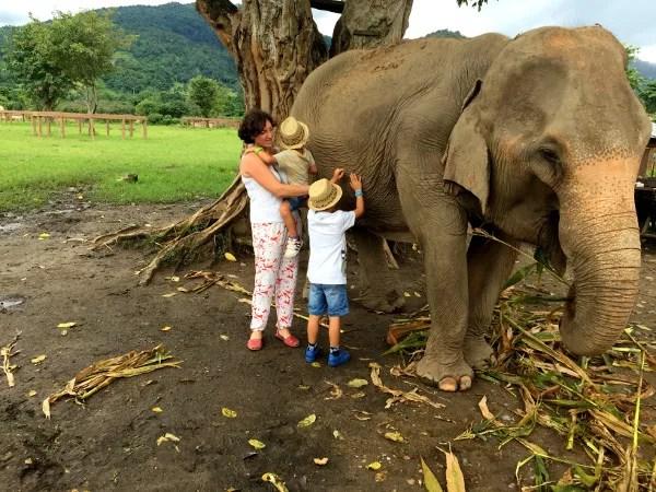 Fotos del viaje a Tailandia con niños, Vero, Teo, Oriol y elefantes
