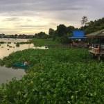 Fotos del viaje a Tailandia con niños, pescador