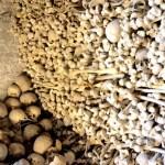 Fotos de Wamba en Valladolid, osario huesos