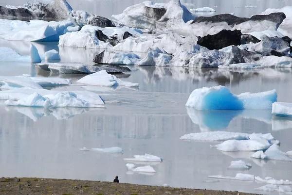 La laguna glaciar Fjallsárlón en Islandia