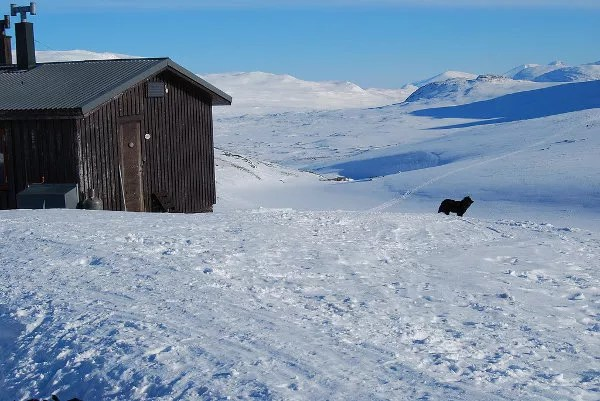 La vida en los refugios de Laponia Sueca