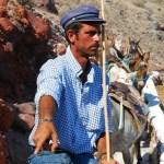 Fotos de Santorini, los burros