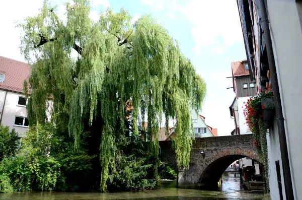 Puente del barrio de pescadores de Ulm