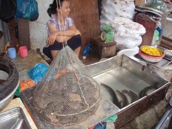 Puestos callejeros en la zona de Hoan Kiem