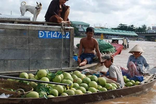 Tienda de melones en el mercado flotante de Cai Rang
