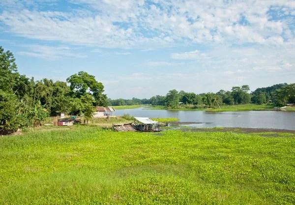 Viajes a India con Panipuri Viajes, backwaters Kerala