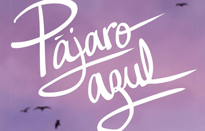PÁJARO AZUL - EL PALOMITRÓN