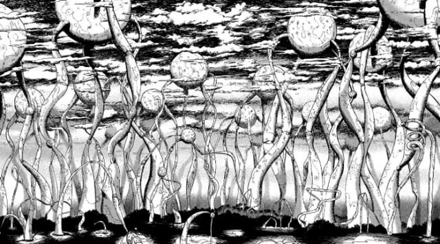 Reseña de La música de Marie, de Usamaru Furuya bosque - el palomitron