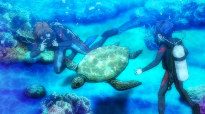 impresiones de Grand Blue Dreaming fondo del mar - el palomitron