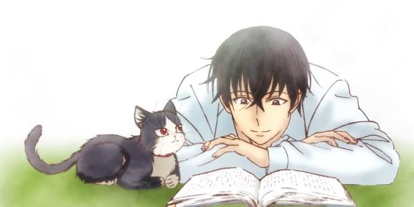 Día Internacional del Gato destacada - El Palomitrón