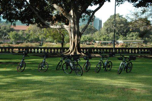 Solitarias las bicicletas esperan pacientemente a sus jinetes. (Foto José Ubaldo/El Pasajero).