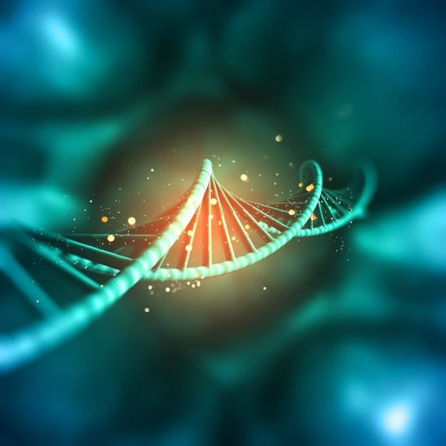 The Role Of Epigenetics In Obesity And Metabolic Disease