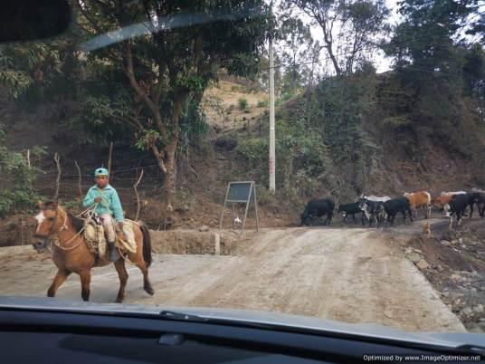 no es extraño cruzarse con gente en burro, en las montañas