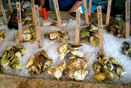 Muestrario de ostras