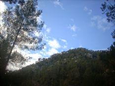 Más vistas