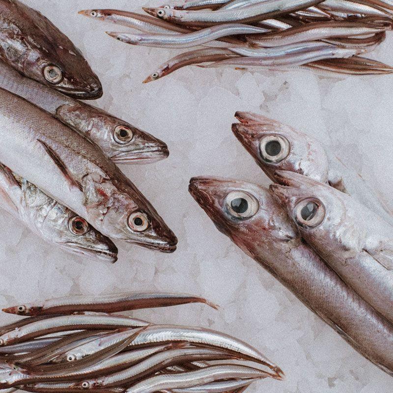 el pescador productos pack elpescador 800x800 1