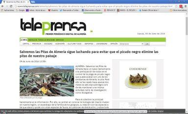 NOTICIA EN TELEPRENSA Primer periodico digital de Almería