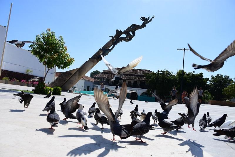 Una forma de prevenir las enfermedades transmitidas por las palomas es limpiar las zonas donde hay presencia de heces con abundante agua, evitando así la exposición al polvillo.FOTO/ NÉSTOR DE ÁVILA.