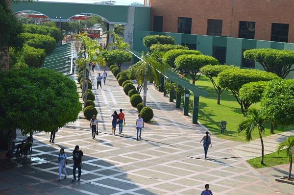 La Universidad ofrece descuentos en las matrículas de posgrados.  FOTO/REFERENCIA.