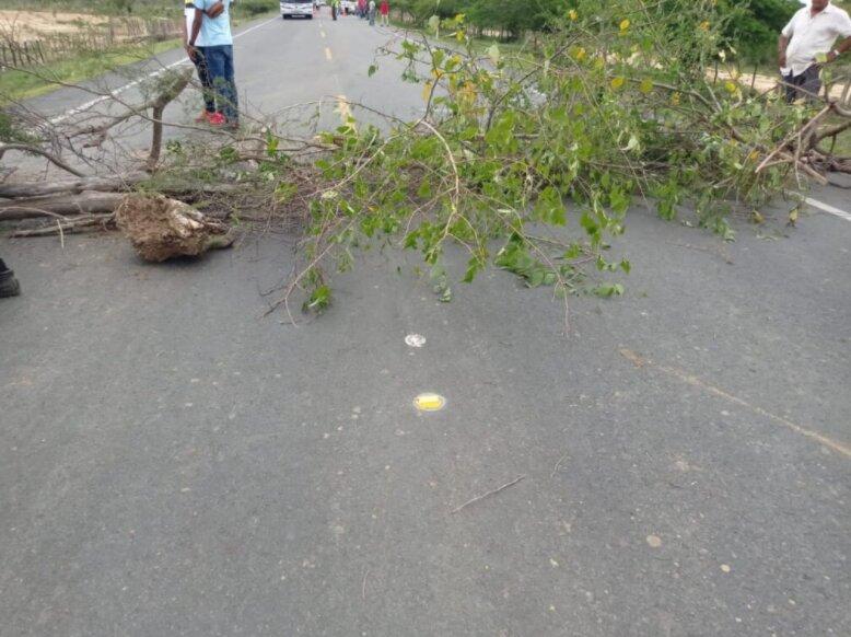 Los manifestantes bloquearon la vía con troncos de arboles y algunos baldes con agua.