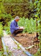 a simpler life el pocito gardens illustrated november 2000 03
