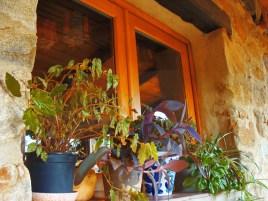 a simpler life el pocito patio window